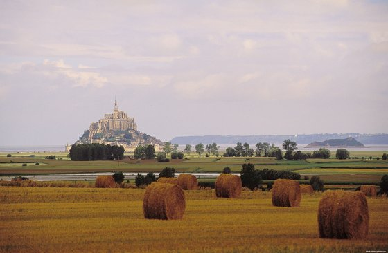 Mont-St-Michel, general view over a wheat field, looking northwest into the Baie du Mont-St-Michel